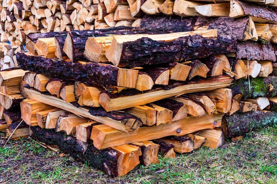 Feuchtes Holz ist nicht für den Kamin geeignet